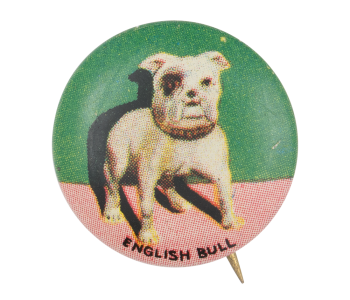 English Bull Art Button Museum