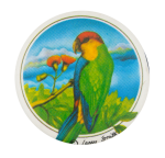 Tropical Bird Art Button Museum