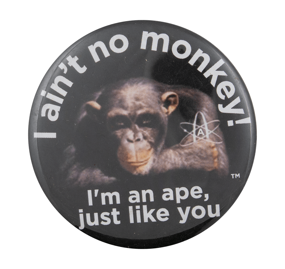 Ape Like You Cause Busy Beaver Button Museum