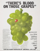 """""""There's Blood On Those Grapes"""" Boycott Ad"""