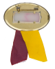 Minnesota Rose Bowl Tour button back Event Button Museum