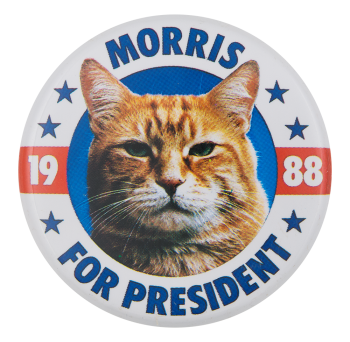 Morris For President  Advertising Button Museum