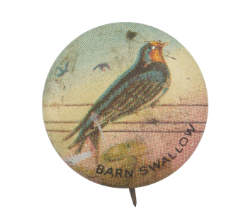 Barn Swallow Art Button Museum