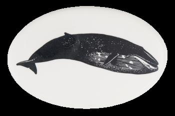 Blue Whale 4 Art Button Museum