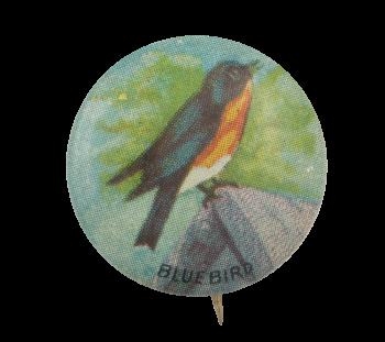 Bluebird Art Button Museum
