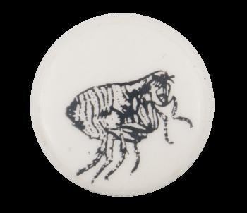 Bug Art Button Museum