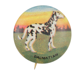 Dalmatian Art Button Museum