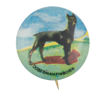 Doberman Pinscher Art Button Museum