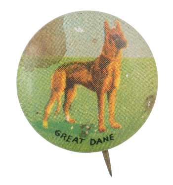 Great Dane Art Button Museum
