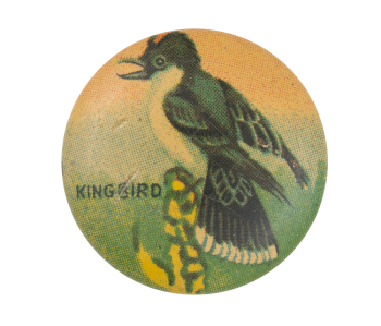 King Bird Art Button Museum