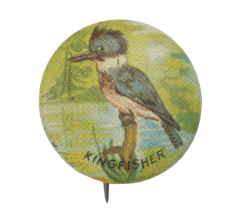 Kingfisher Art Button Museum