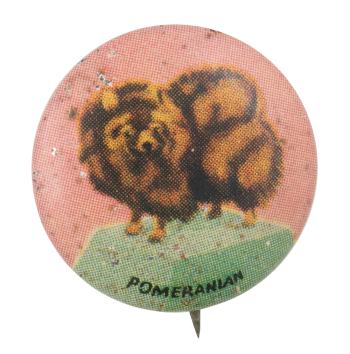 Pomeranian Art Button Museum