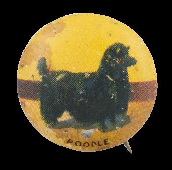 Poodle Art Button Museum