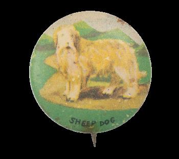 Sheep Dog Art Button Museum