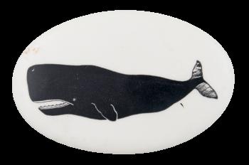 Sperm Whale 2 Art Button Museum