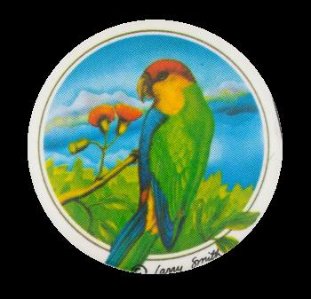 Tropical Bird Art Button Museum