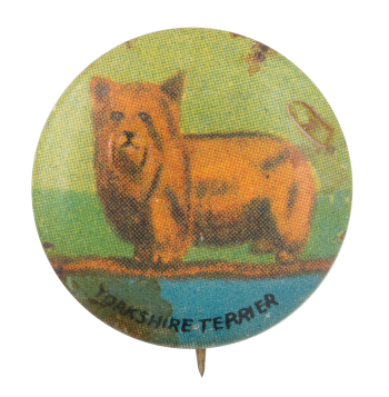 Yorkshire Terrier Art Button Museum