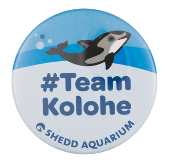 Team Kolohe Shedd Aquarium Chicago Button Museum