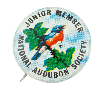 National Audubon Society Junior Member Club Busy Beaver Button Museum