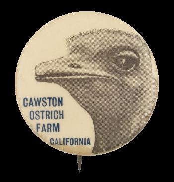 Cawston Ostrich Farm Event Button Museum
