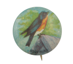 Bluebird Art Button Museum