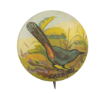 Catbird Art Button Museum