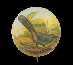 Catbird Art Button Museum