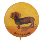 Dachshund Art Button Museum