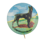 Doberman Pinscher Art Button Museum