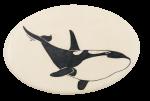 Orca Whale Art Button Museum