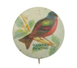 Painted Bunting Art Button Museum