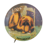 Pekingese Art Button Museum