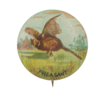 Pheasant Art Button Museum