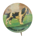 Springer Spaniel Art Button Museum