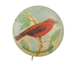 Summer Tanager Art Button Museum