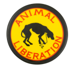 Animal Liberation Cause Button Museum