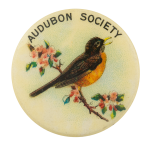 Audubon Society American Robin Club Button Museum