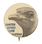 Cawston Ostrich Farm Event Button Museum