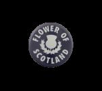 Flower of Scotland Social Lubricator Busy Beaver Button Museum